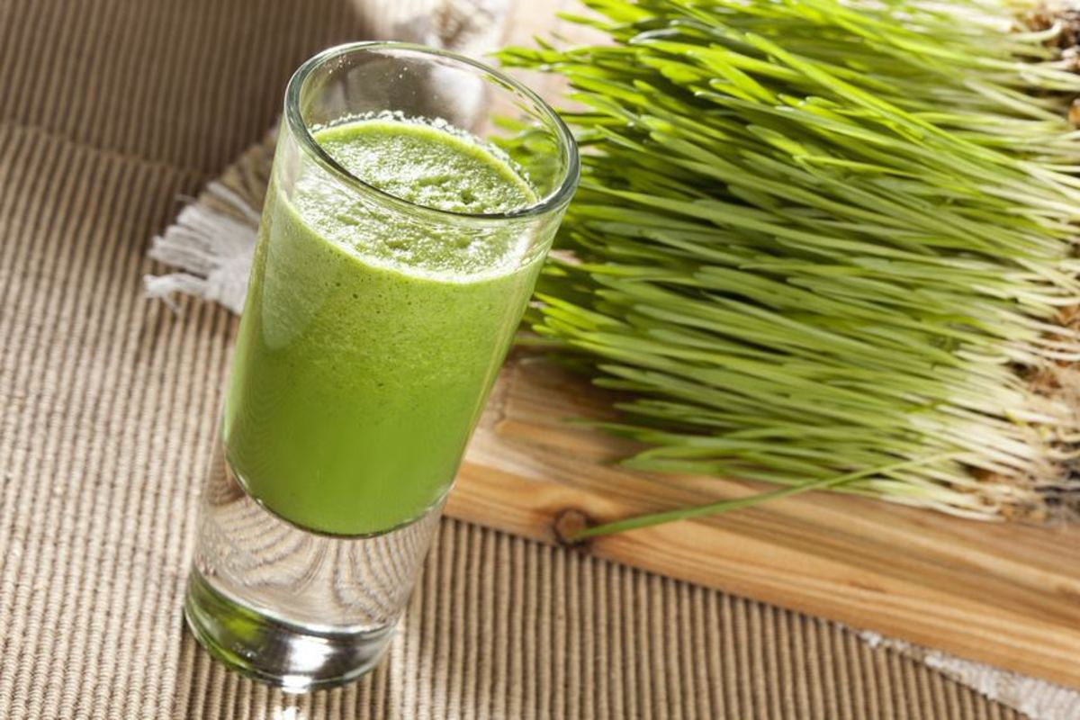Freshly cut wheatgrass is the best.