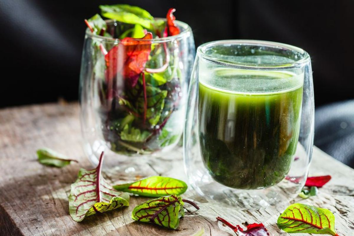 The Best Electric Wheatgrass Juicers