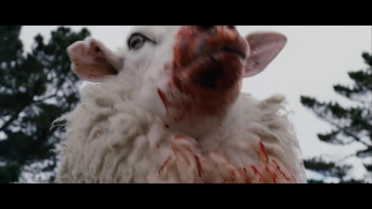 'Black Sheep' - Zombie Movie Review