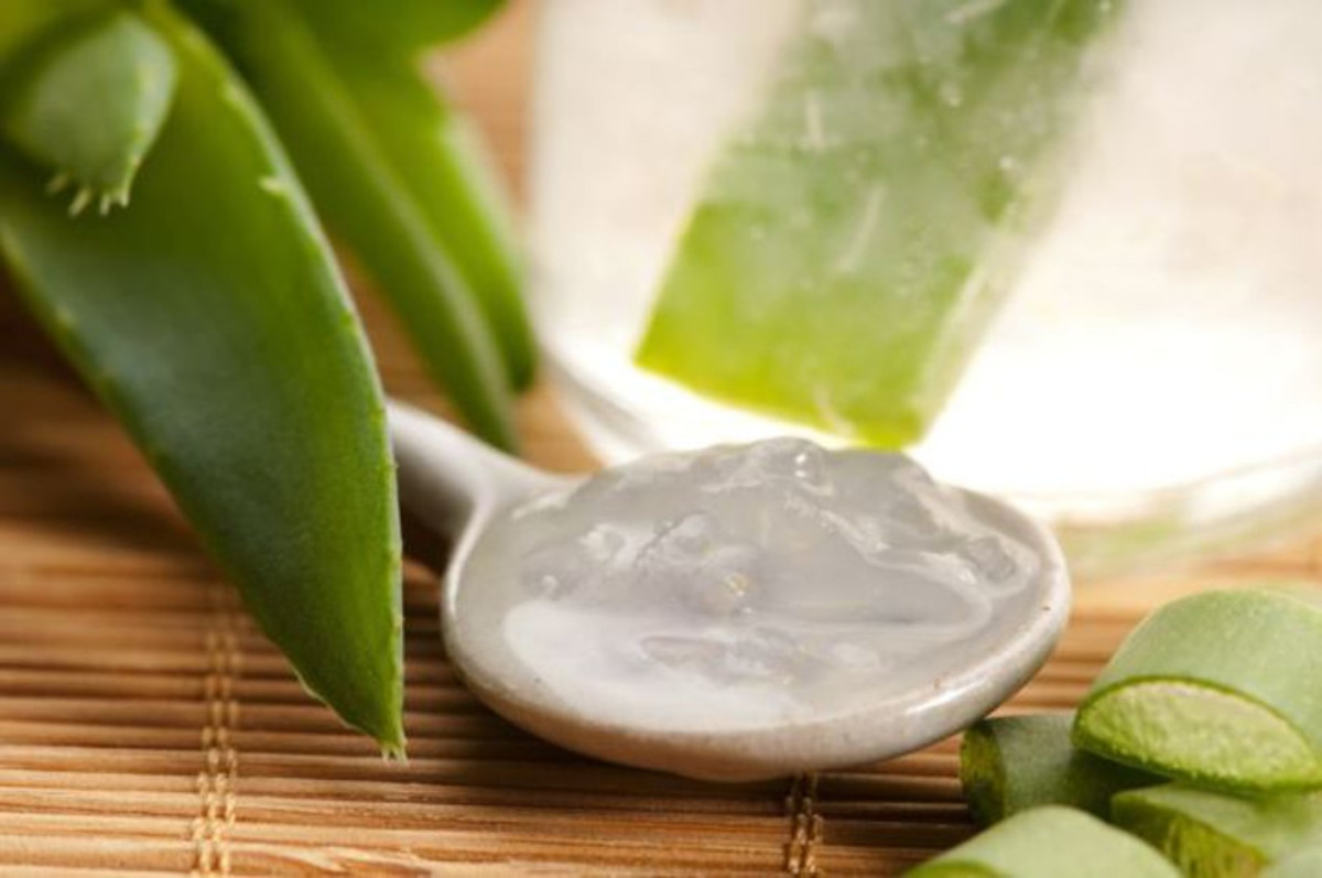 Aloe Vera Gel and Health Benefits