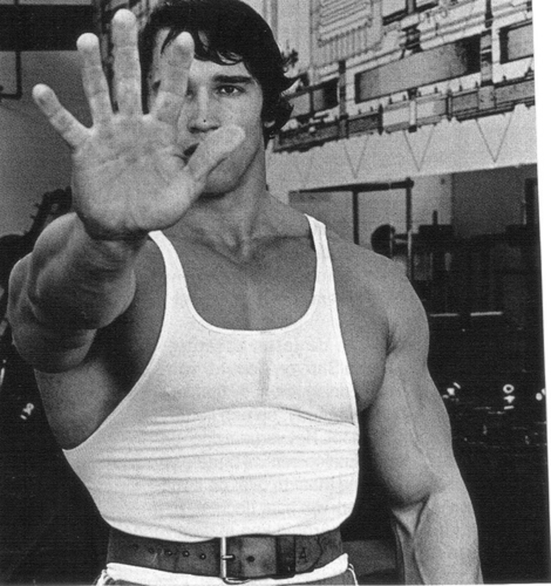Bodybuilding Secrets: Schwarzenegger's Tips for Success