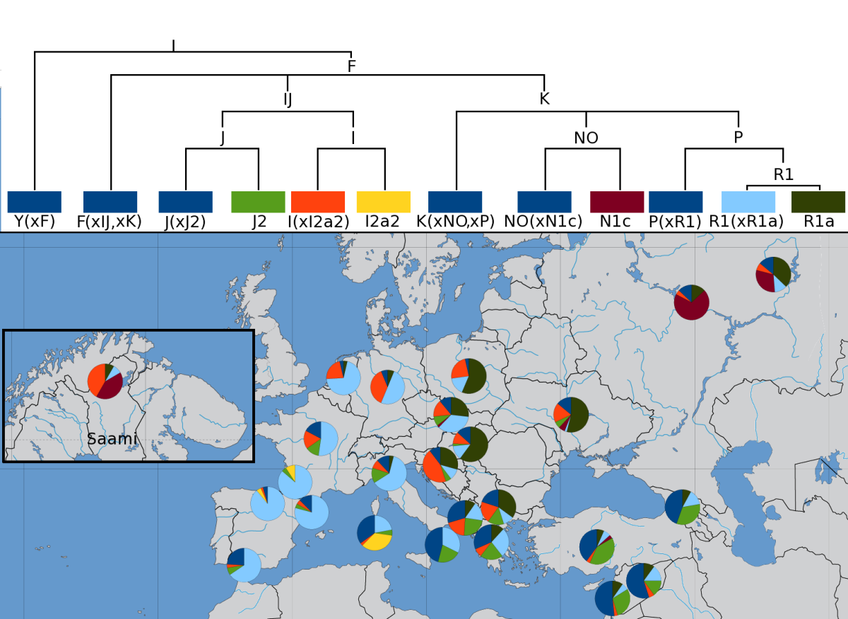 Distribution of Y chromosome haplotypes in Europe.