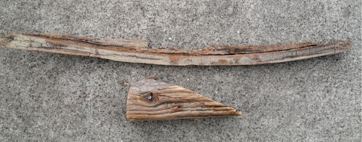 Turn pieces of driftwood into a sculpture.