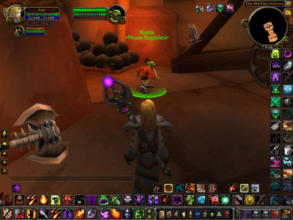 A Guide to Finding Vanity Pet Vendors in Outlands and Northrend in World of Warcraft