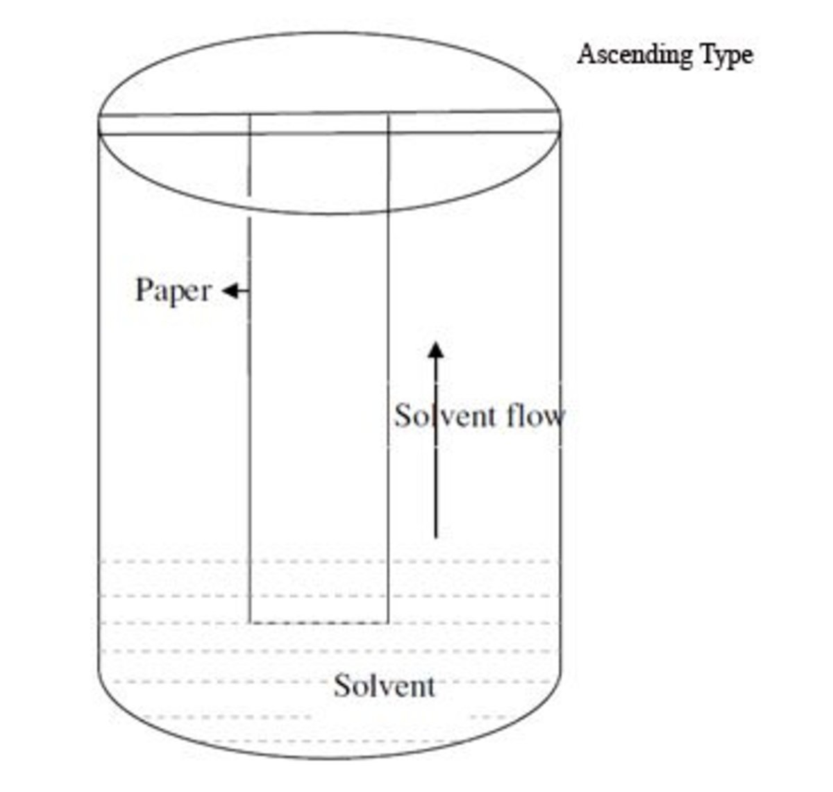 Separation of amino acid mixture by paper chromatography