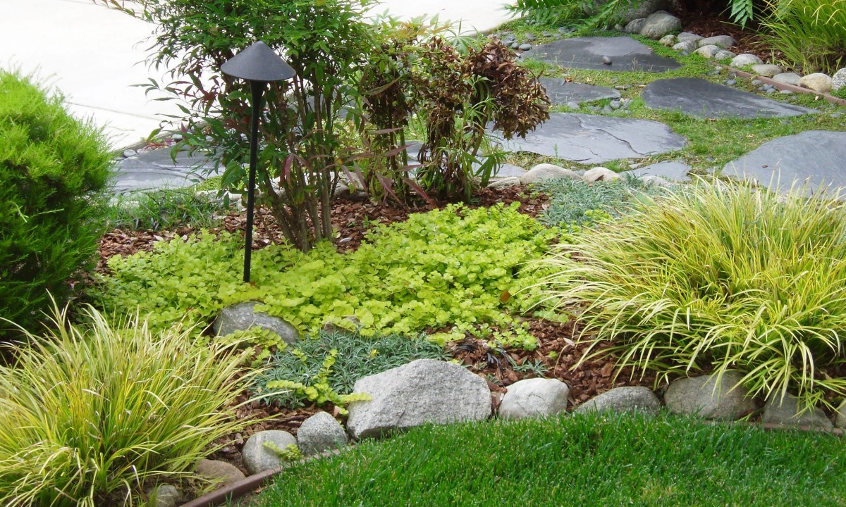 This attractive little garden has a combination of softscape and hardscape, as most gardens do.