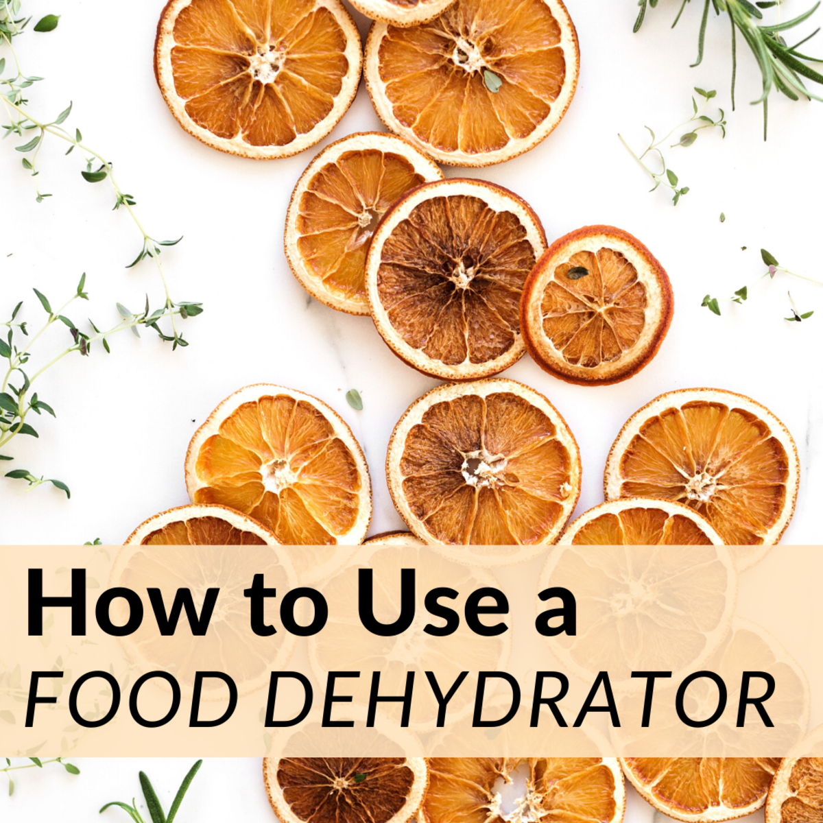 How to Dehydrate Your Own Food