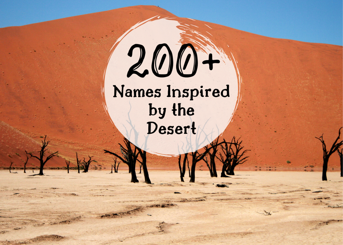 From Abalos to Zuni, this extensive name list can help you pick a unique, desert-themed name.