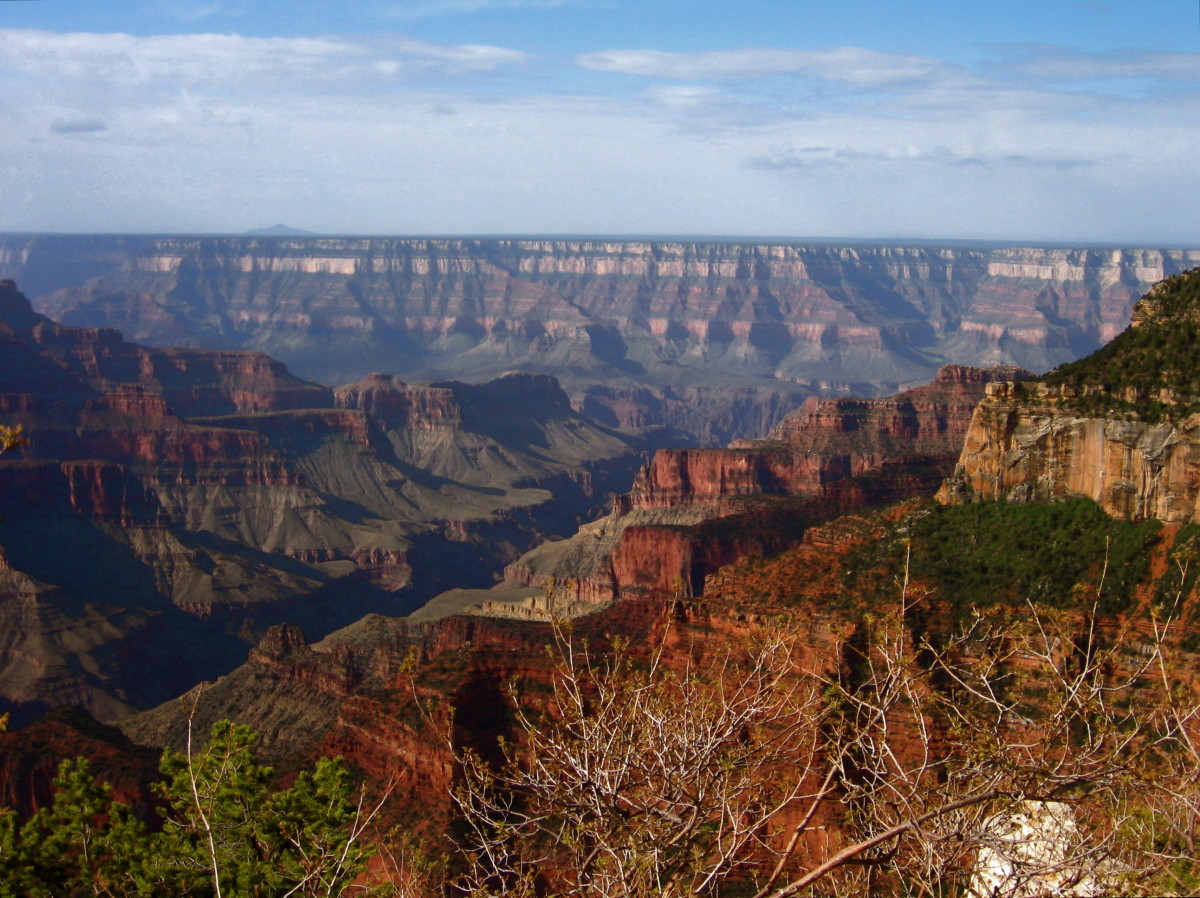 Springtime at the Grand Canyon North Rim.