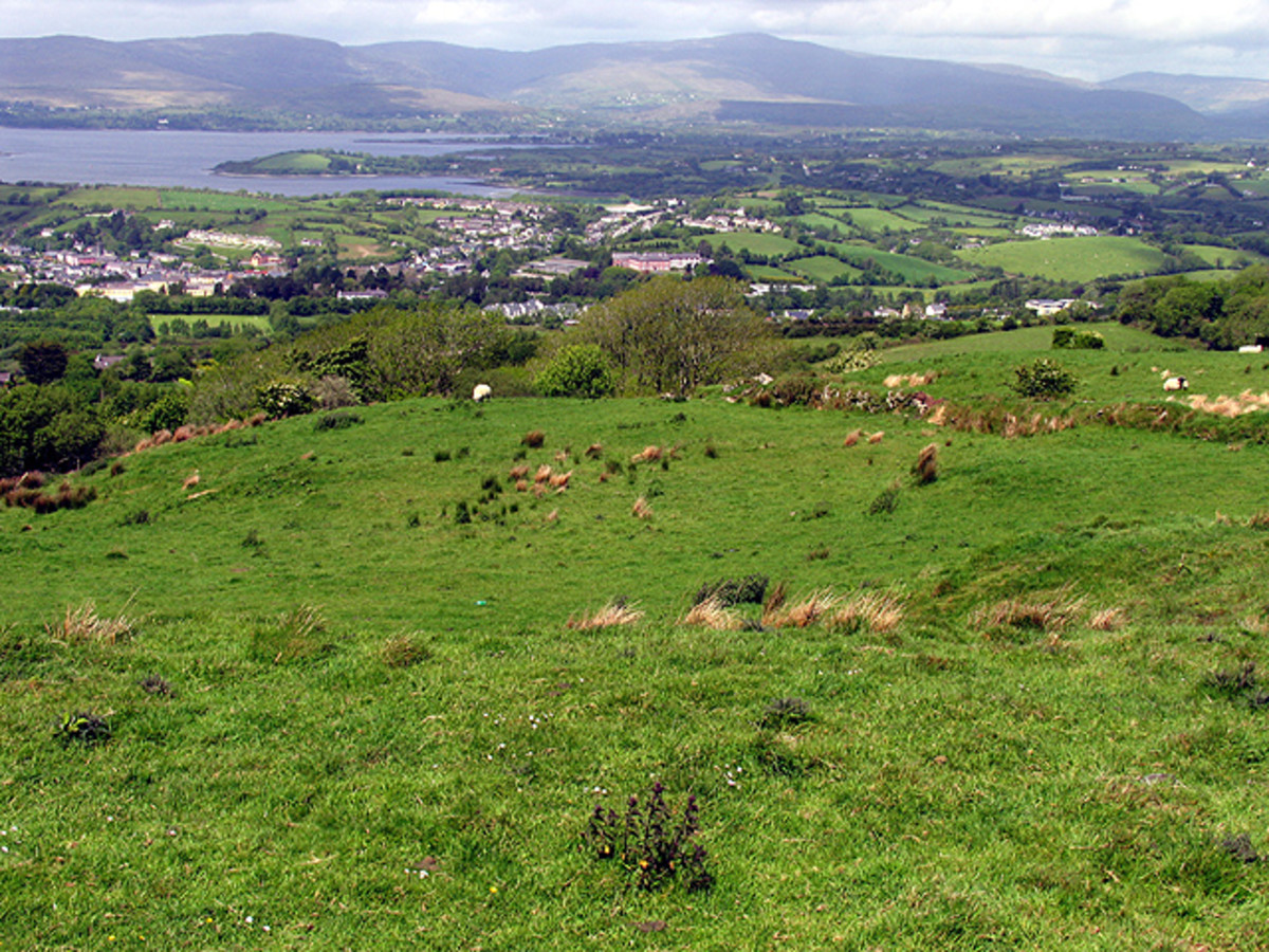 Ireland's rolling grass meadows are perfect for raising healthy meat and dairy animals.