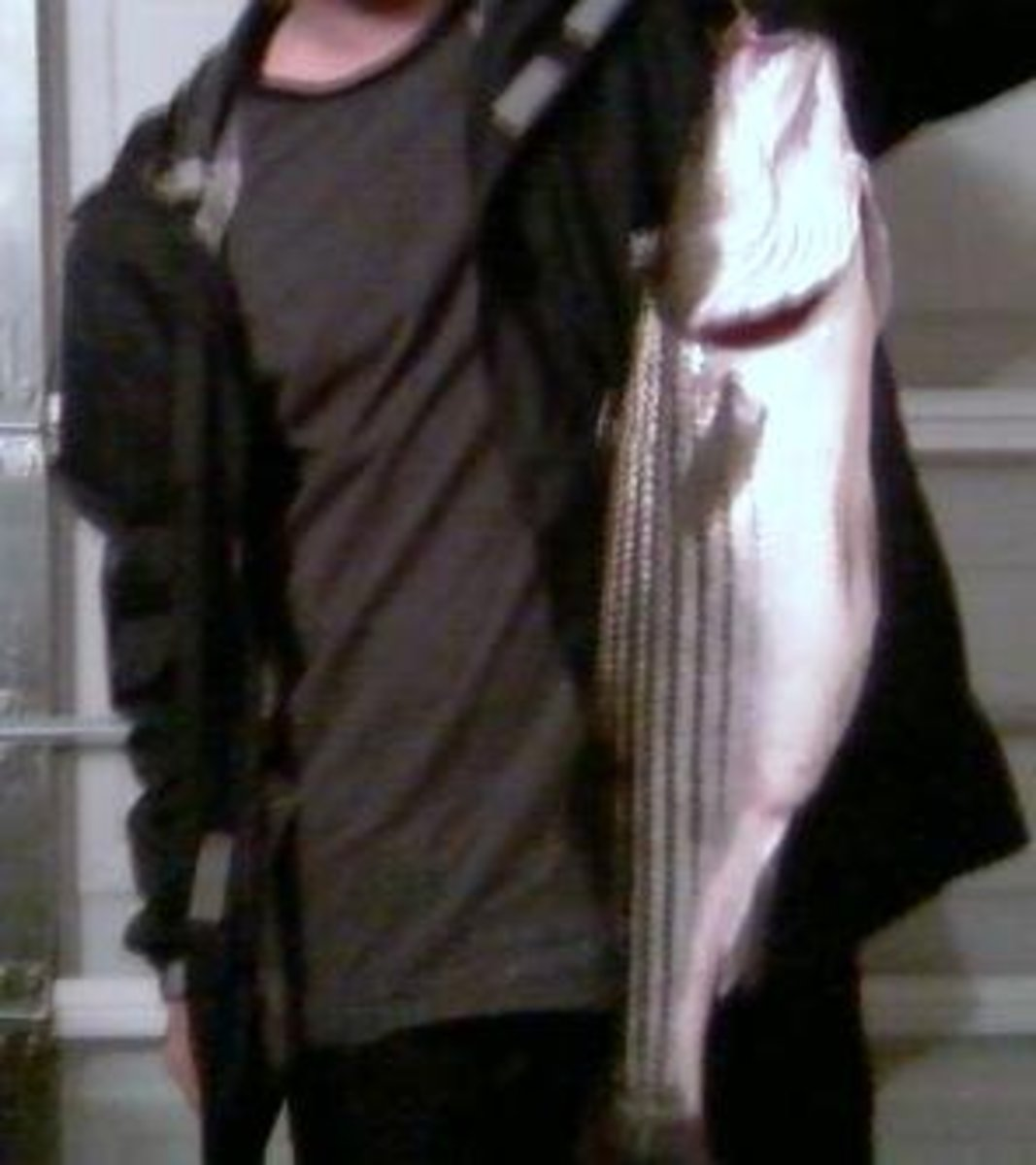 Striped Bass caught at Manasquan Inlet on a 4 inch Sassy Shad lure