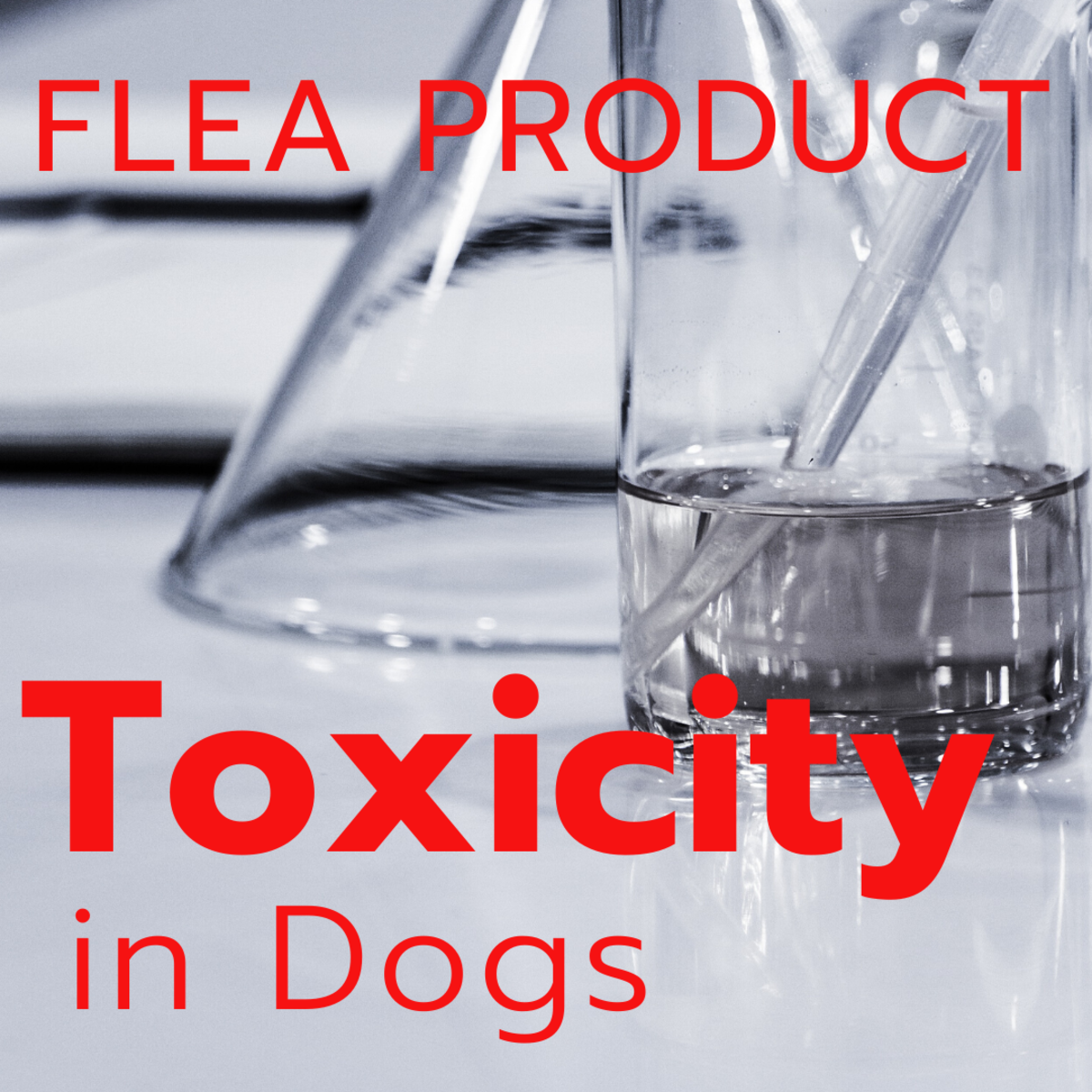 Warnings About Flea Product Toxicity in Dogs