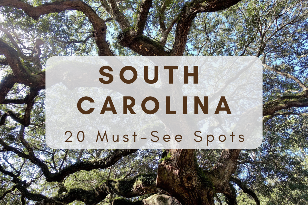 South Carolina is a gorgeous state with no dearth of things to see and do. Here are the sites you won't want to miss!