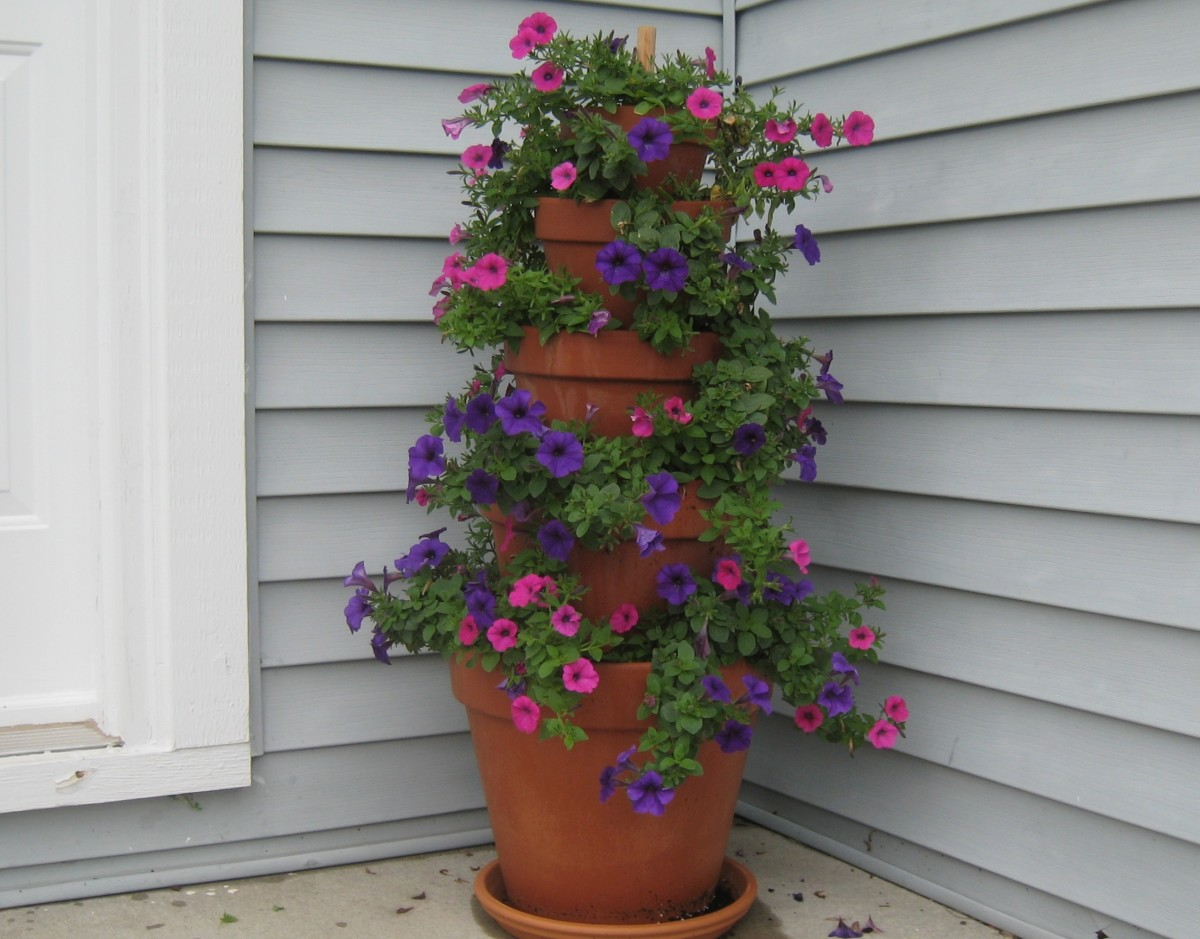 How to Make a Terracotta Pot Flower Tower with Annuals