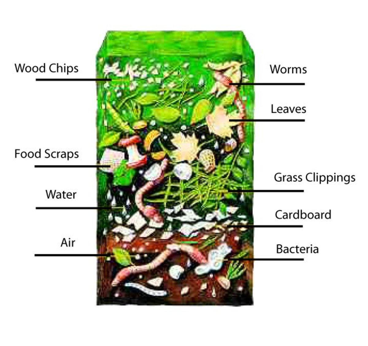 starting-a-worm-farm