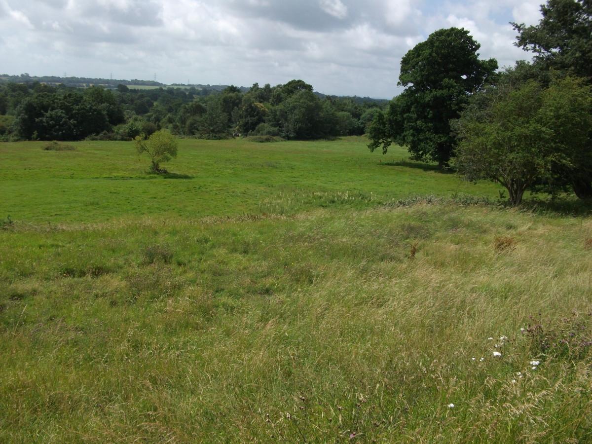 Harold's view looking down Senlac Ridge