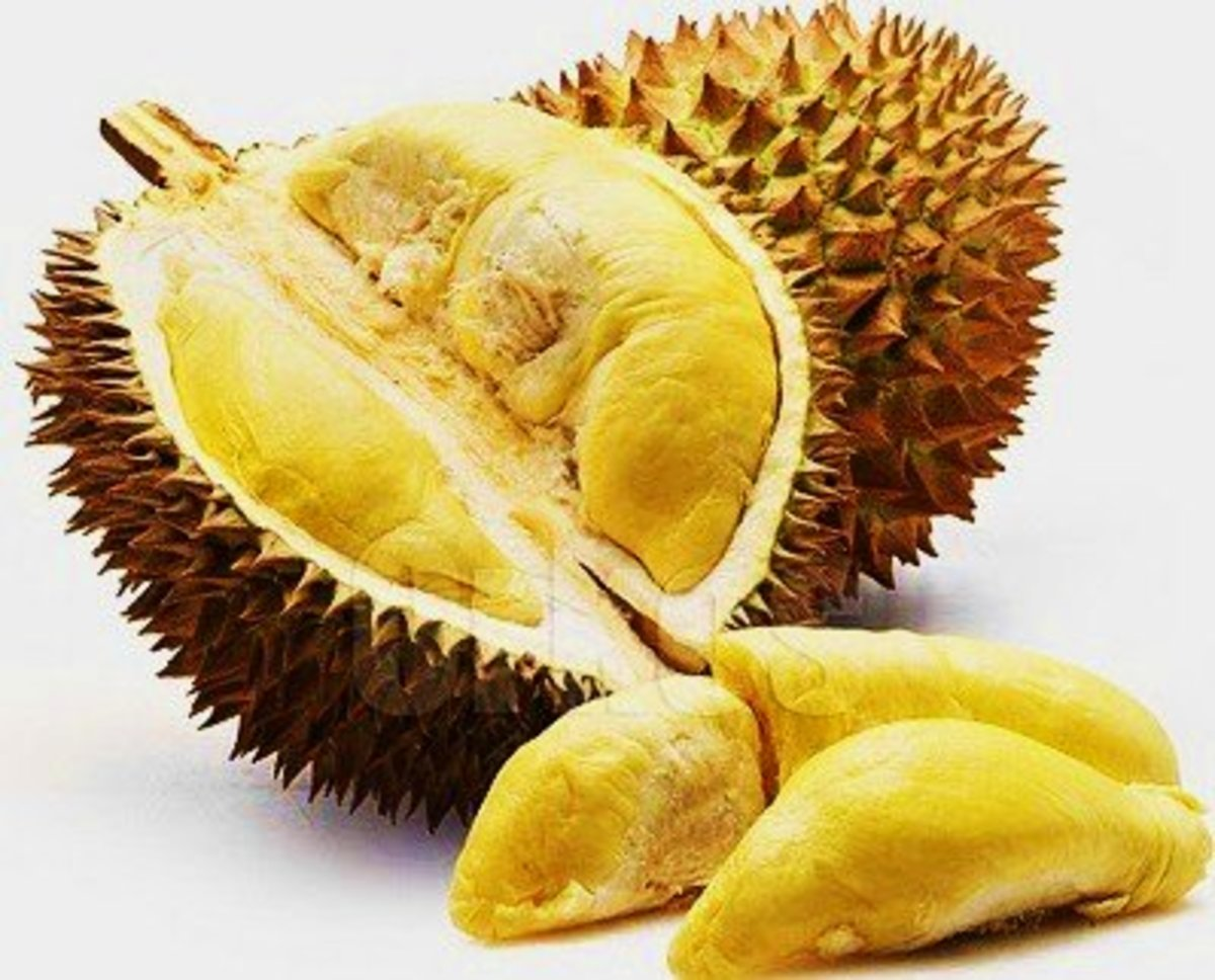 durian the king of fruits delishably