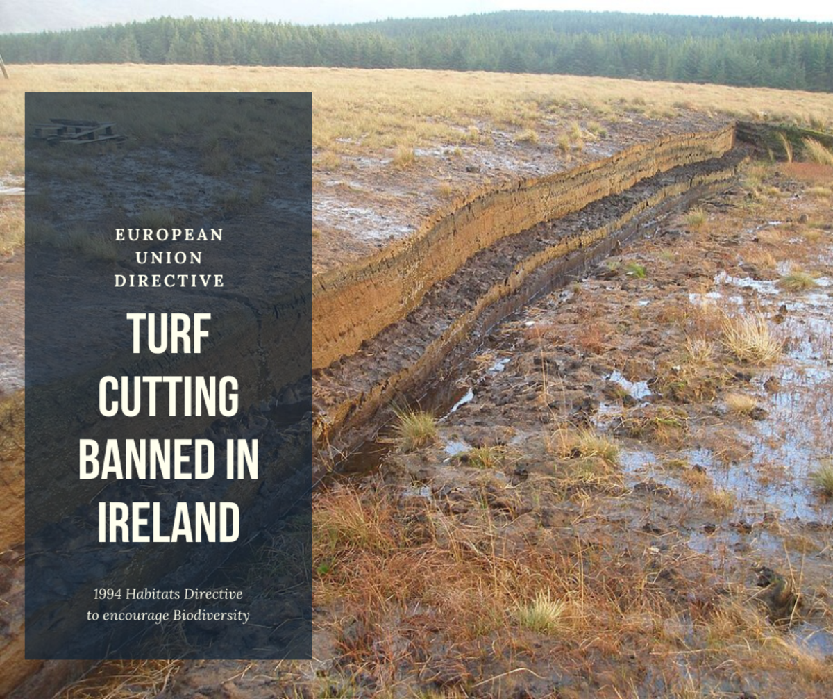 Turf Cutting Banned in Ireland