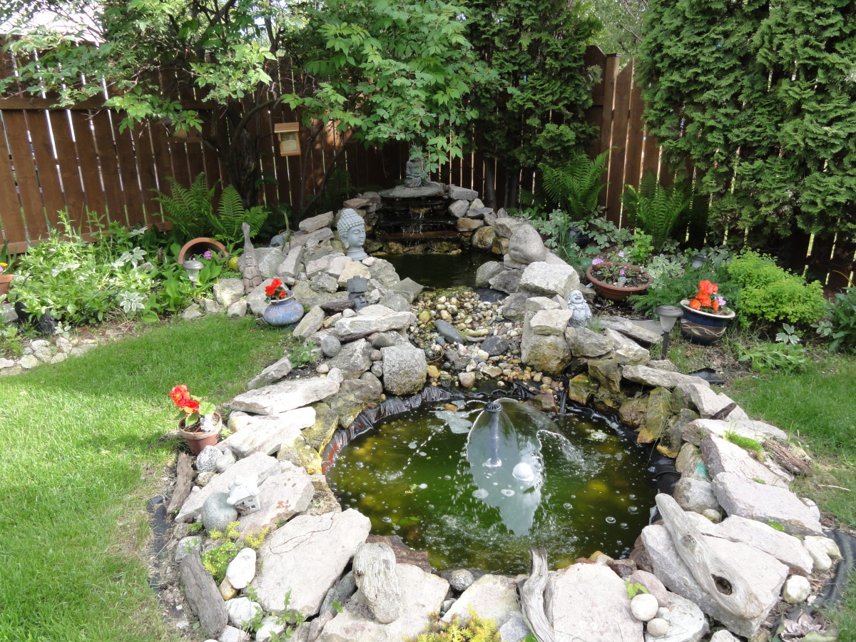 Waterfall Meditation Pond - A DYI Project