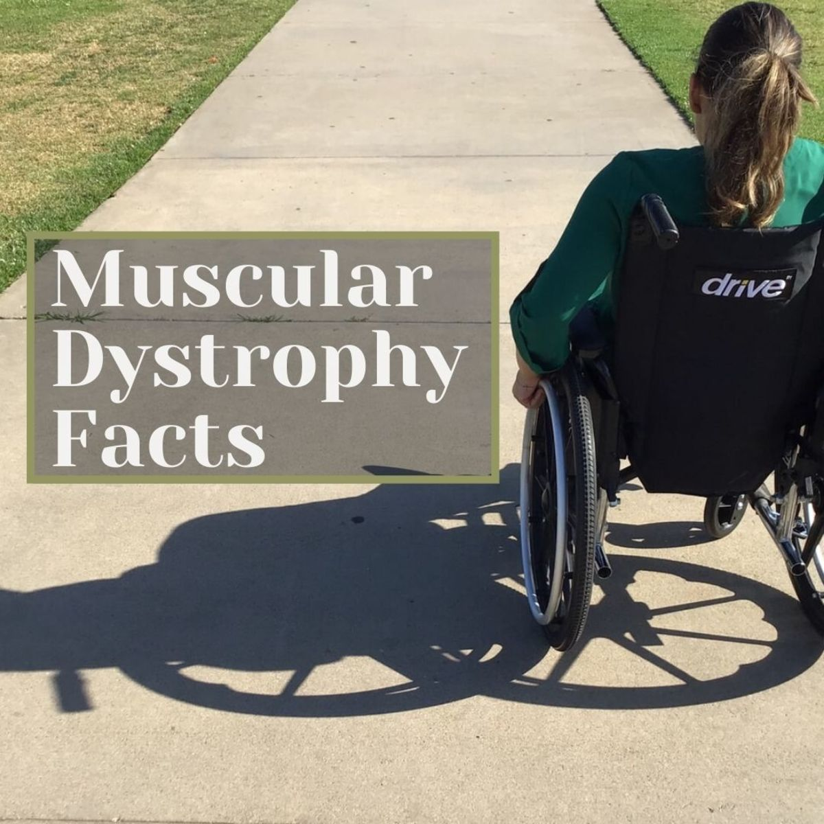 What Is Muscular Dystrophy? Facts and Statistics