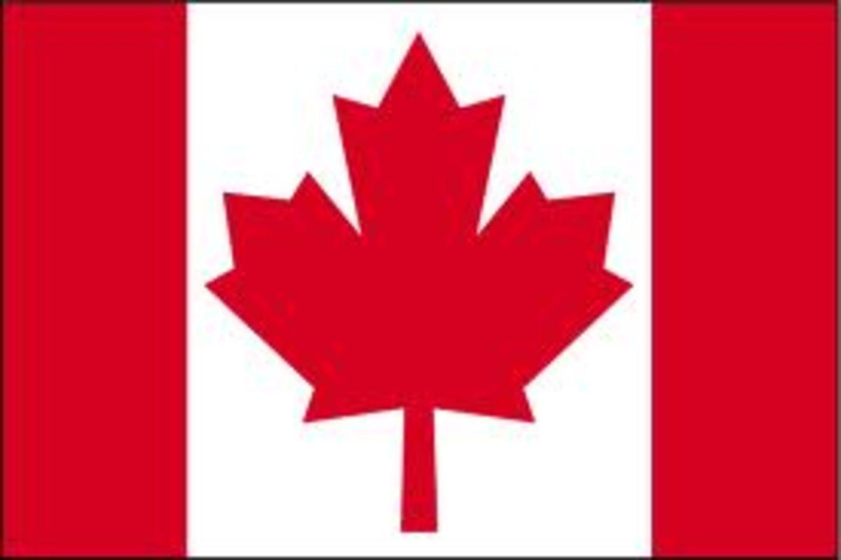 5 Largest Birds in Canada