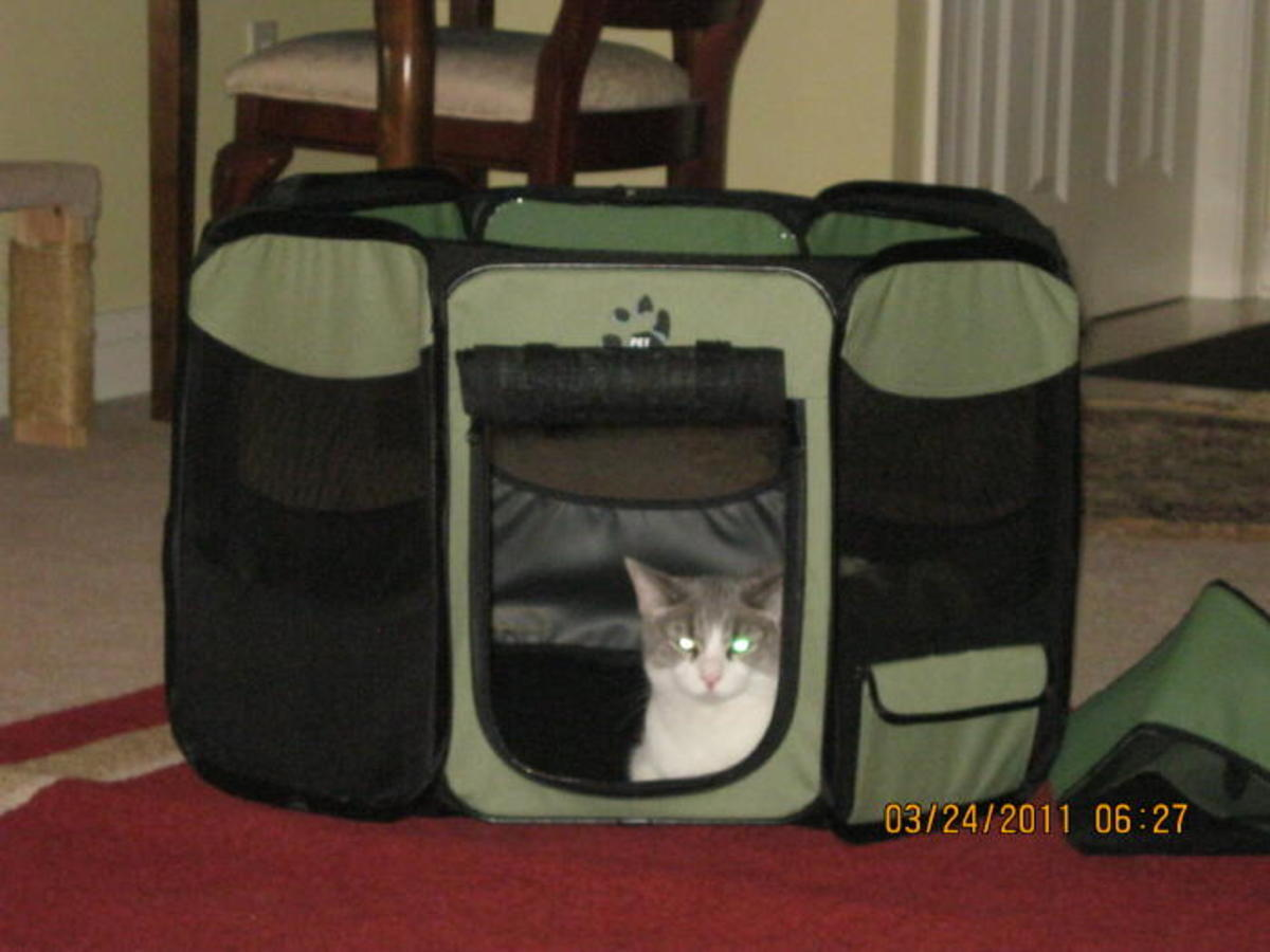 The Octagon Cat Pen is the best cat carrier I have found for long trips with one or more cats.