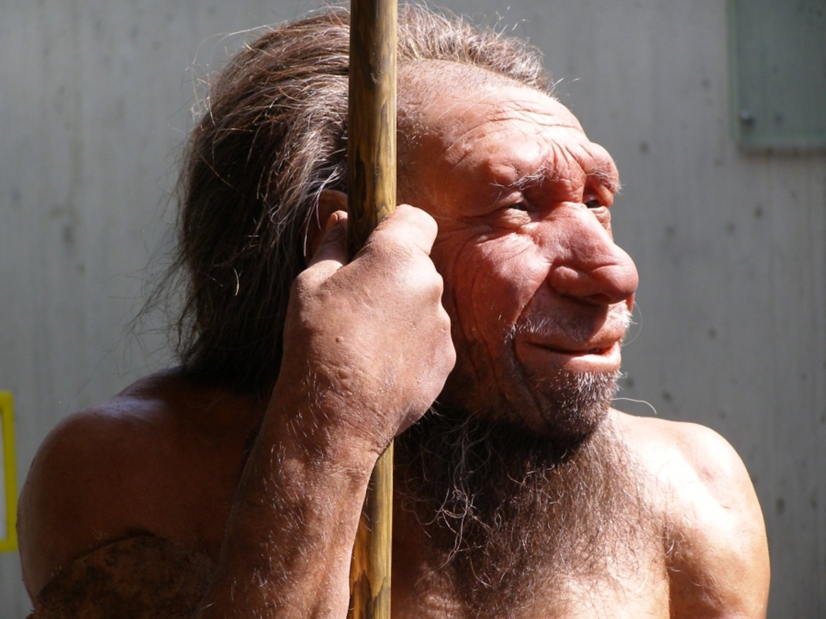The Story of Zana the Russian Neanderthal Found in 1850