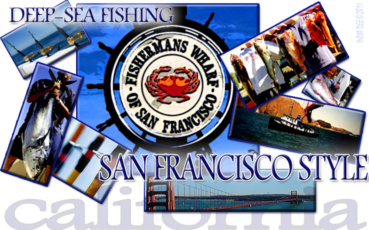Deep-Sea Fishing Near San Francisco