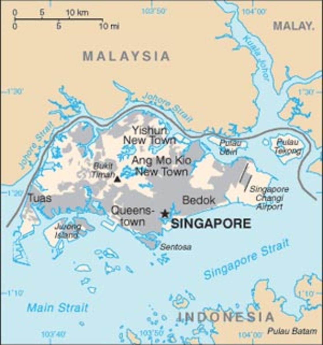 Economic Growth Strategies for Hong Kong & Singapore