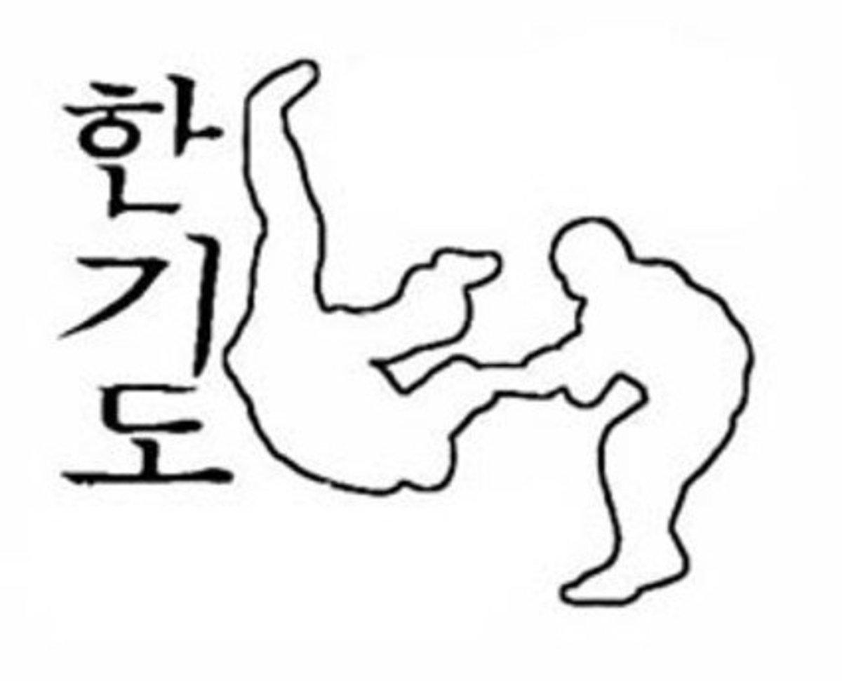 Martial Arts Throw