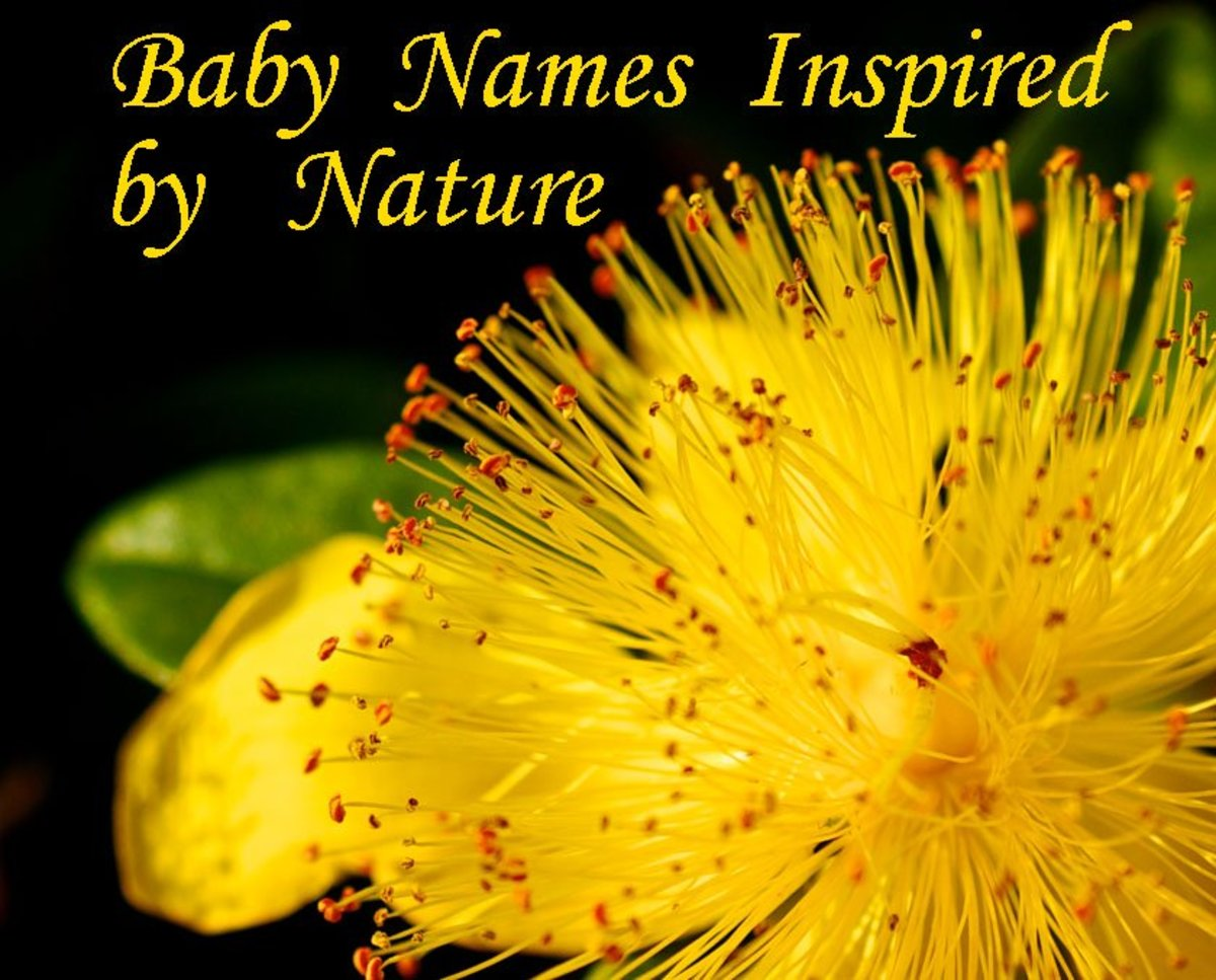 Beautiful Baby Names Inspired by Mother Nature