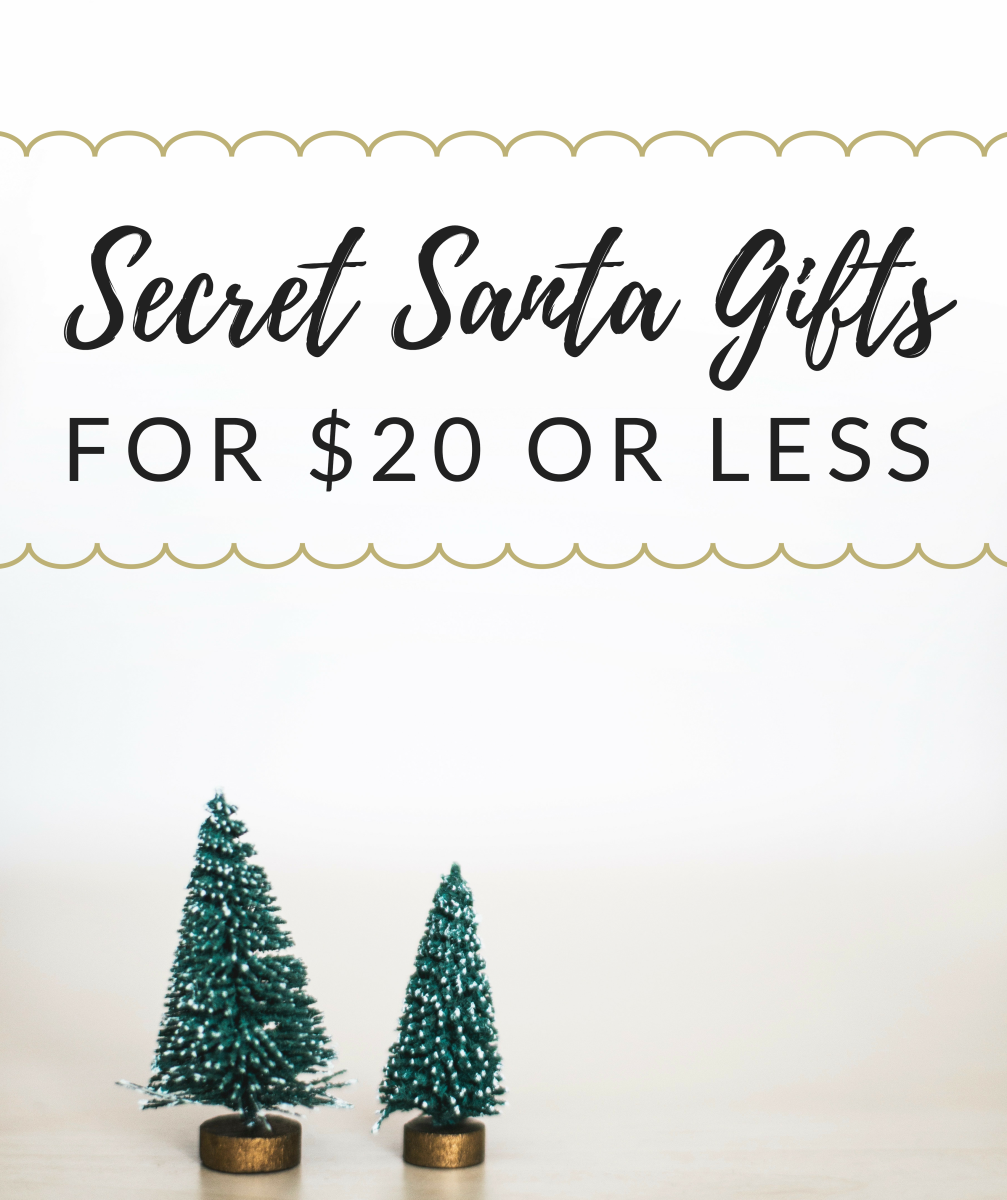 Unisex Secret Santa Gift Ideas for Under $20