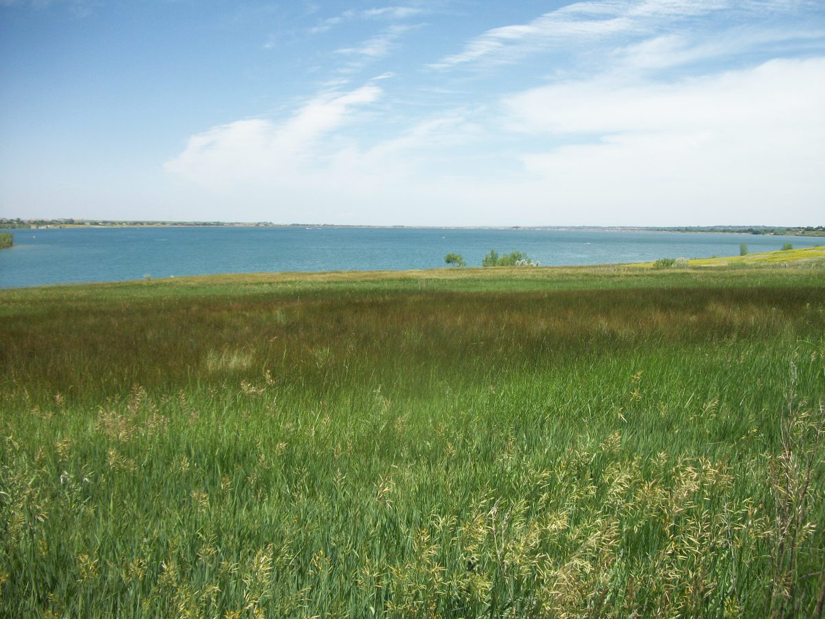 Standley Lake, a North Denver fishing opportunity. View from the southwest portion facing east.