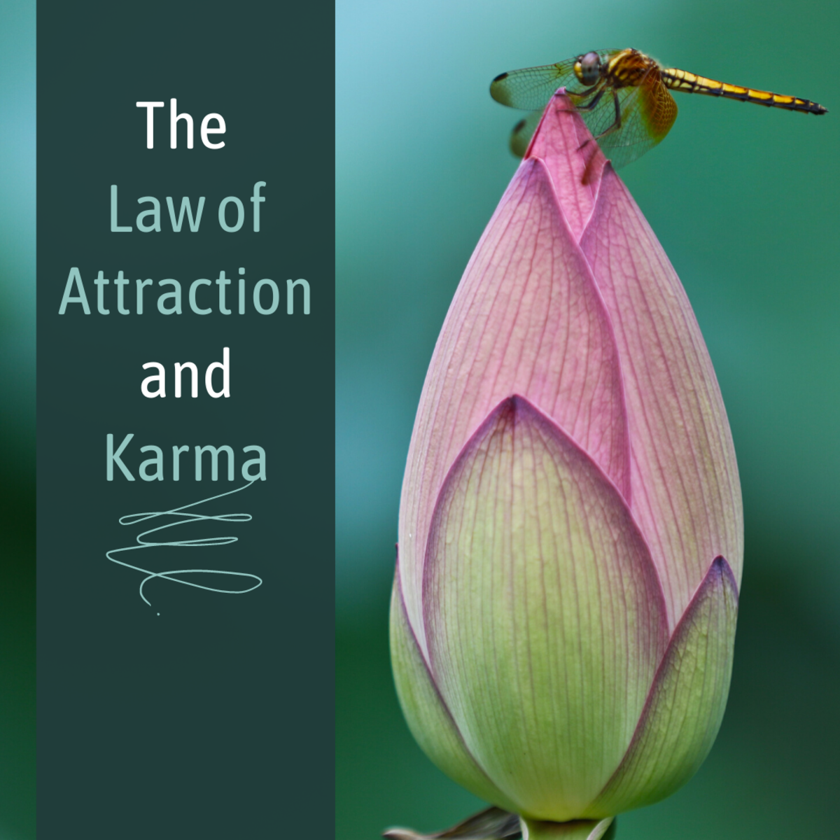Learn how the Law of Attraction relates to paying off Karmic debts.