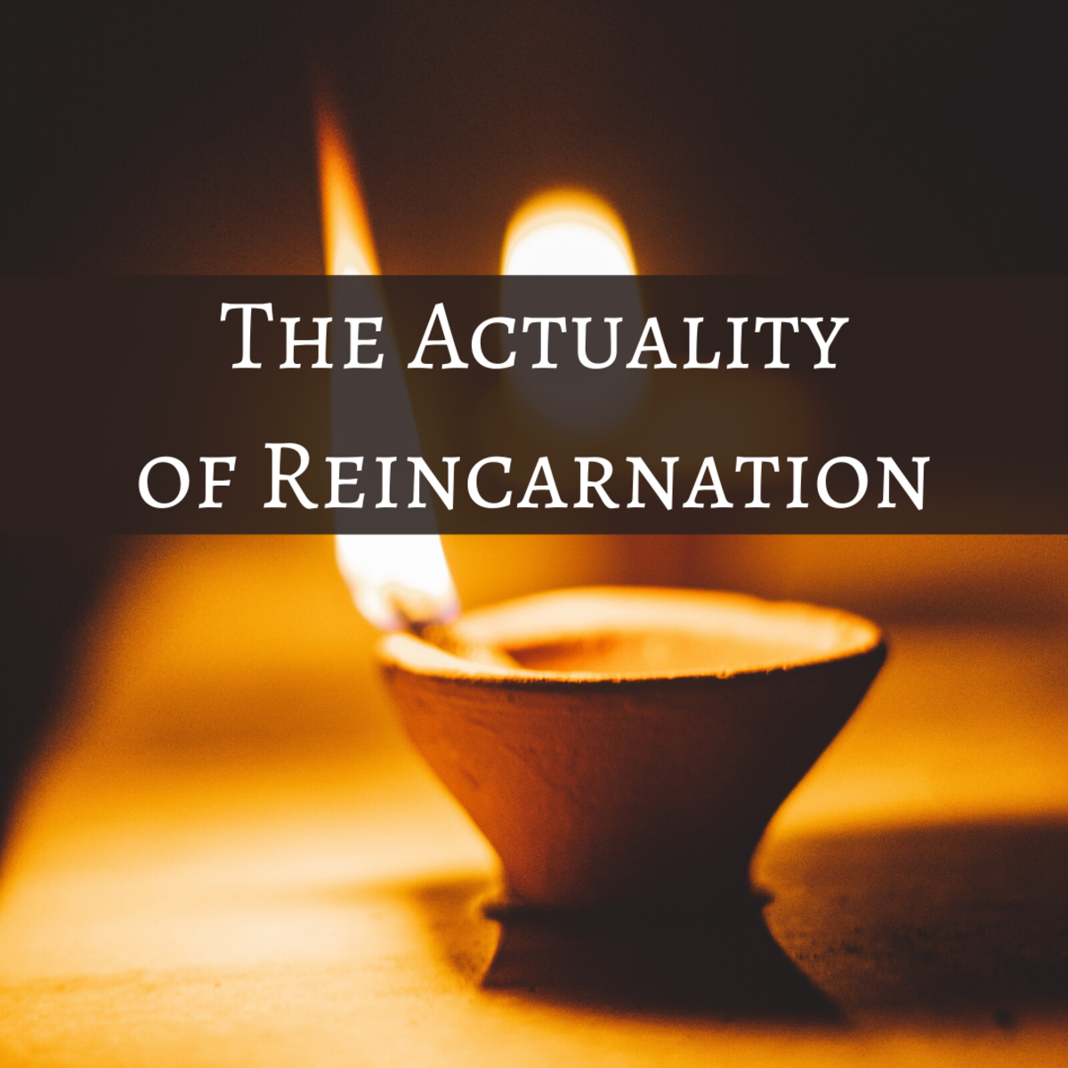 Reincarnation and Human Evolution