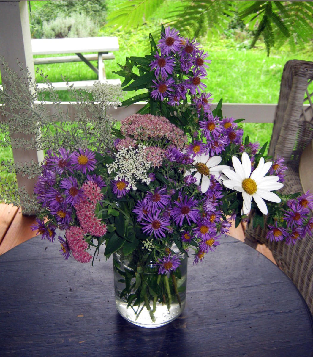 Fall Flowers - Late Blooming Perennials and Shrubs