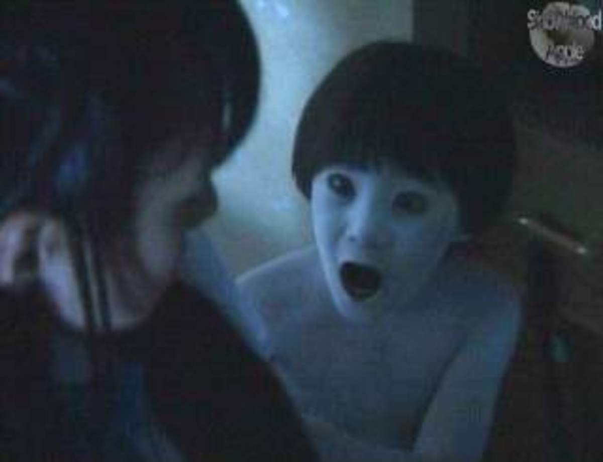 The 25 Scariest Movie Scenes of All Time (a viewer's list)