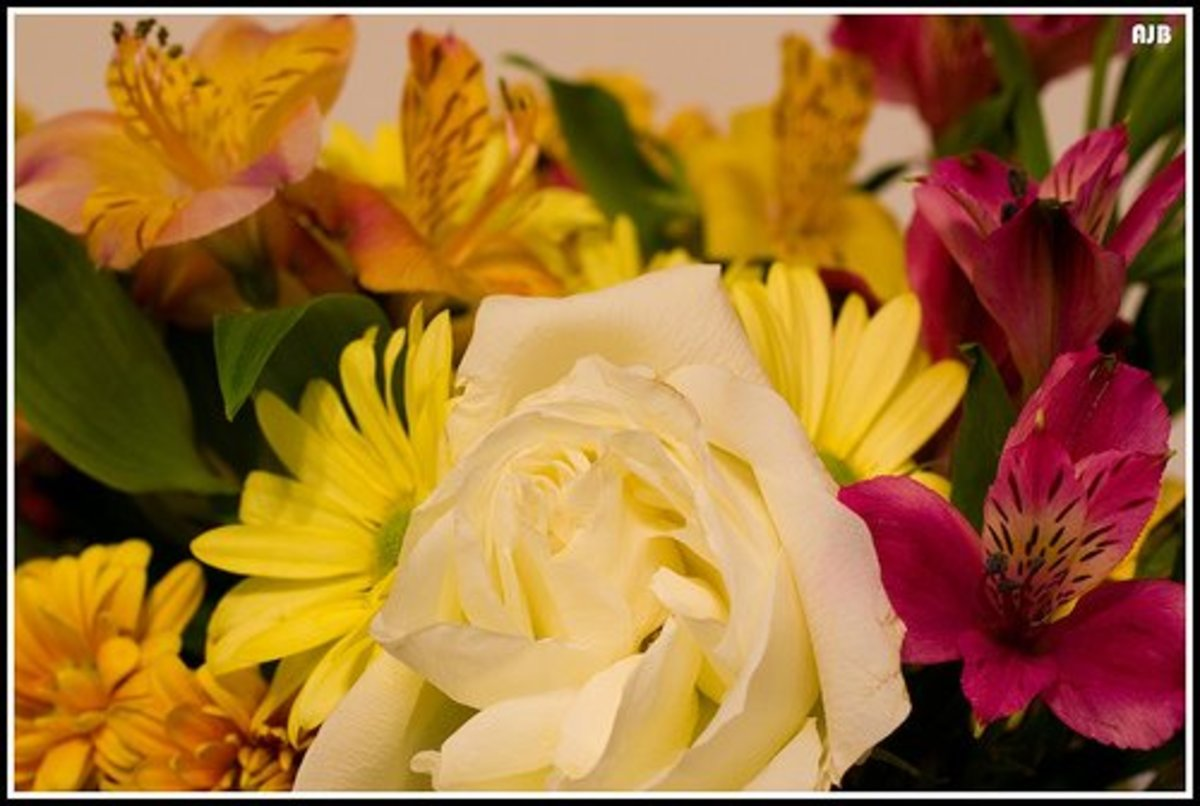 Flowers for Thanksgiving centerpiece