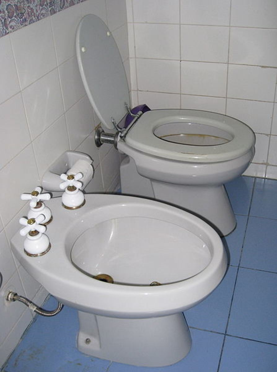 Ooooh look - two toilets for me to use!