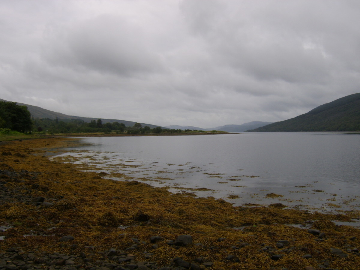 Looking down Loch Fyne towards Inveraray from the beach near Cairndow, on the south shore of Loch Fyne