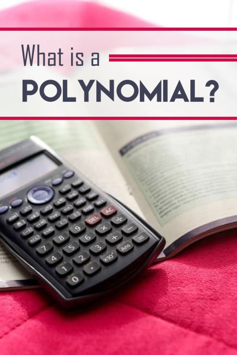 Polynomial Rules: What Defines Polynomials?