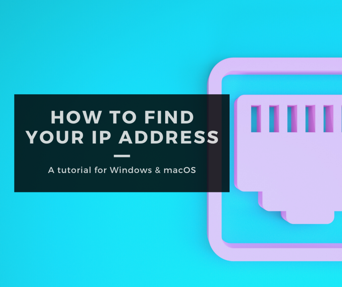 Find your IP address in Windows and macOS.