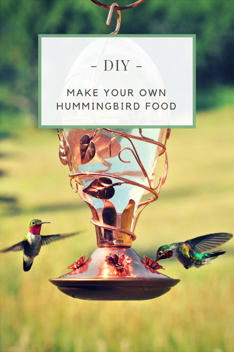 Super Easy Recipe for Hummingbird Food