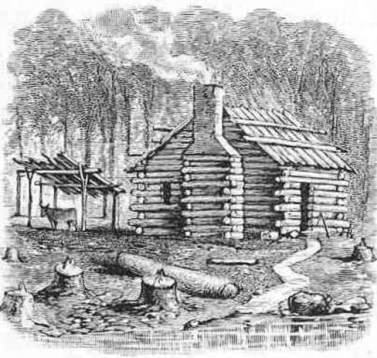 The home designs of the first American settlers built from rough-hewn logs felled in their localities.