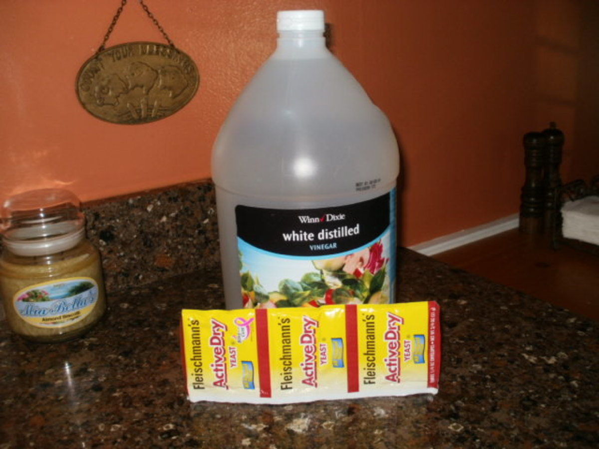 White vinegar and yeast to maintain and treat your septic system