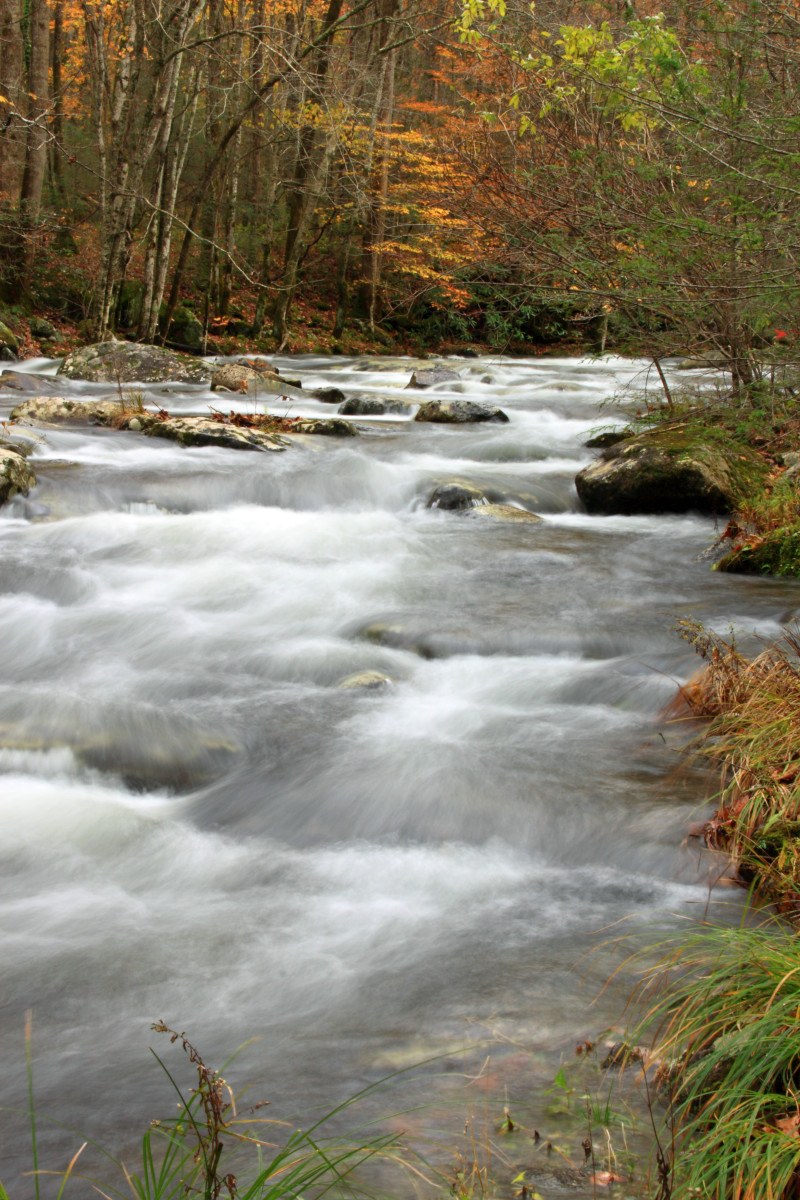 Streams and rivers are abundant in the Appalachians.