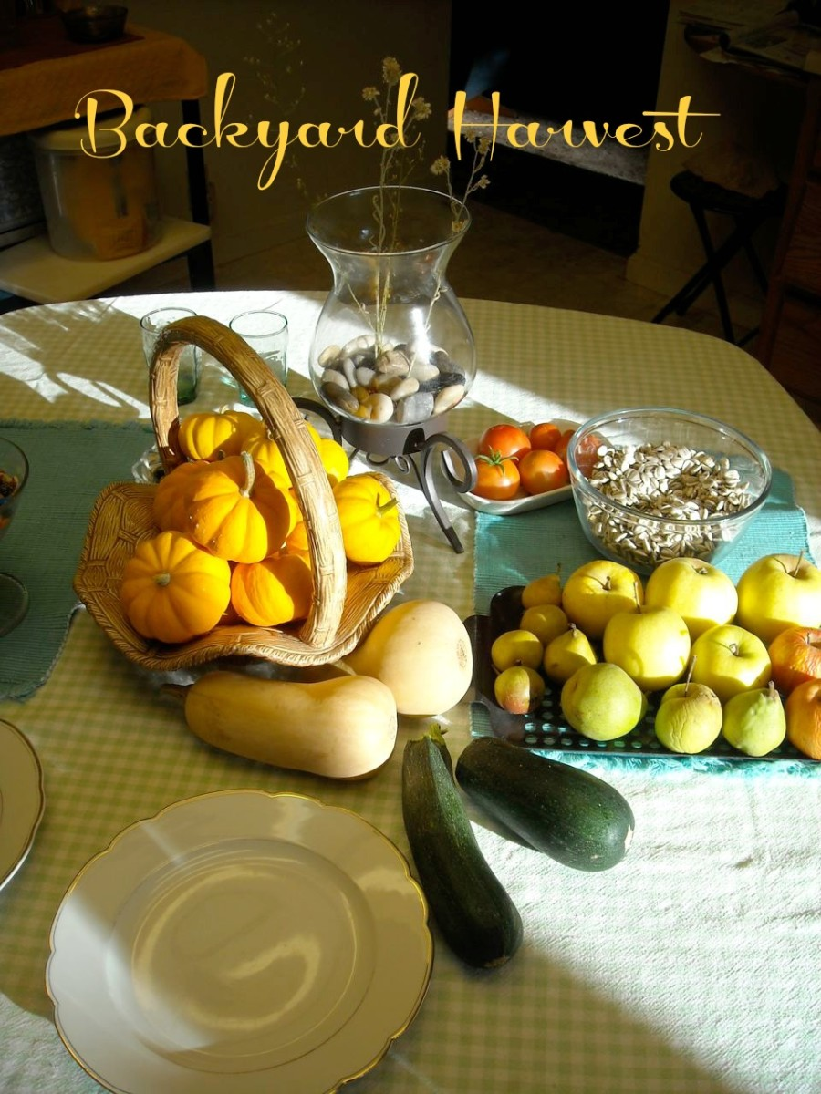 On an Autumn afternoon, there are apples, pears, sunflower seeds, summer squash, winter squash, pumpkins and tomatoes.