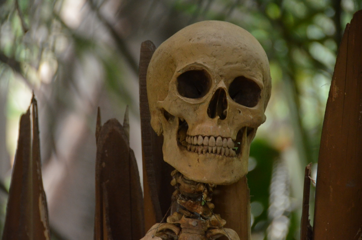A skeleton in Adventureland. No deaths there, ironically!