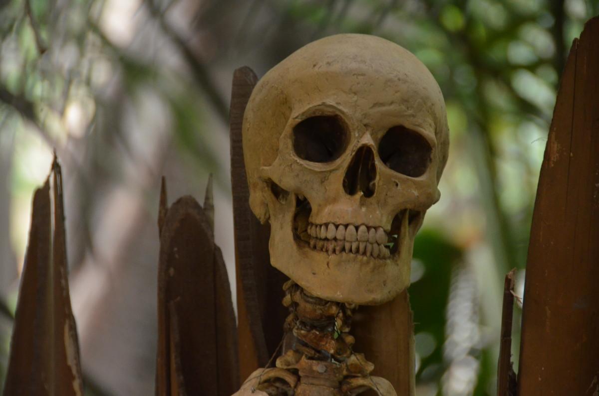 Disneyland's Most Famous Deaths