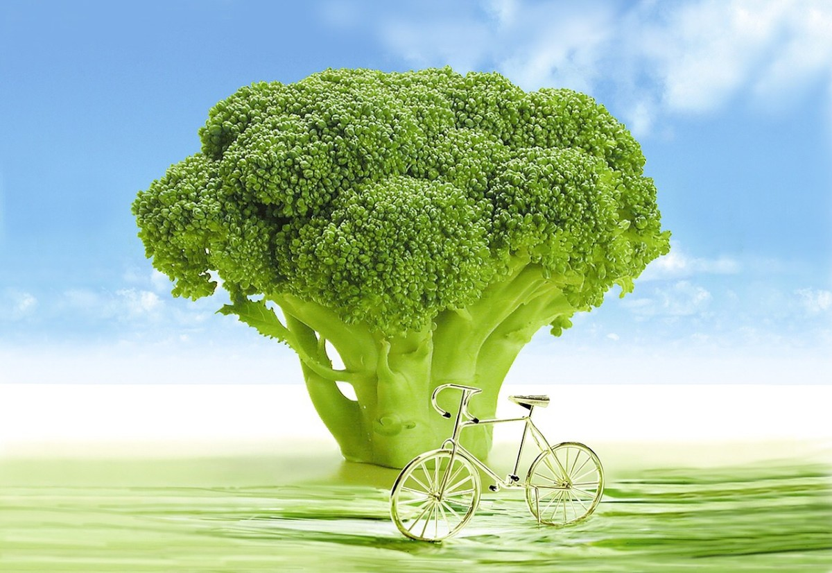 An imaginative broccoli tree